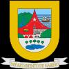 ナリーニョ県(Departamento del Narino)の紋章